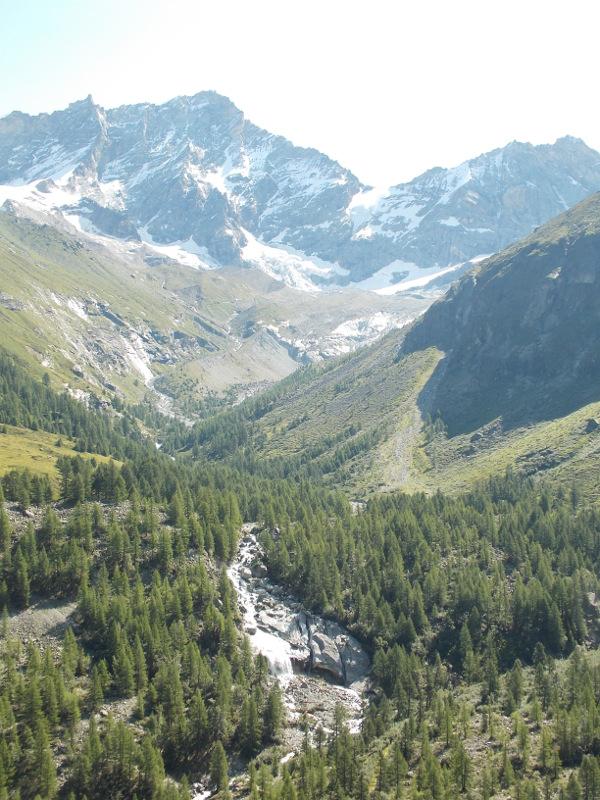 mountain-wild