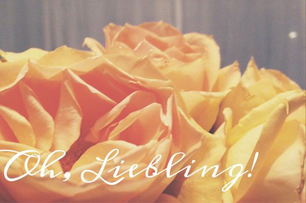 Lieblinge-Rosen