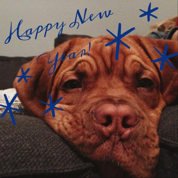 Newton-Happy-New-Year