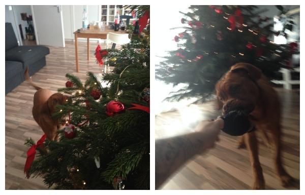 Newton-Weihnachtsbaum