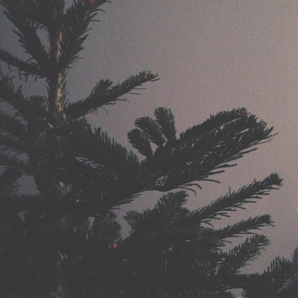 Blogmas-Baum